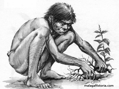 http://www.malagahistoria.com/malagahistoria/imagenes/prehistoria02.jpg